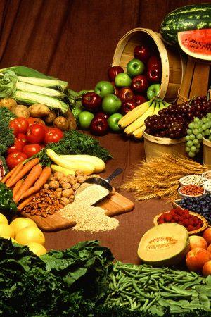 Budget $25 Food Allowance